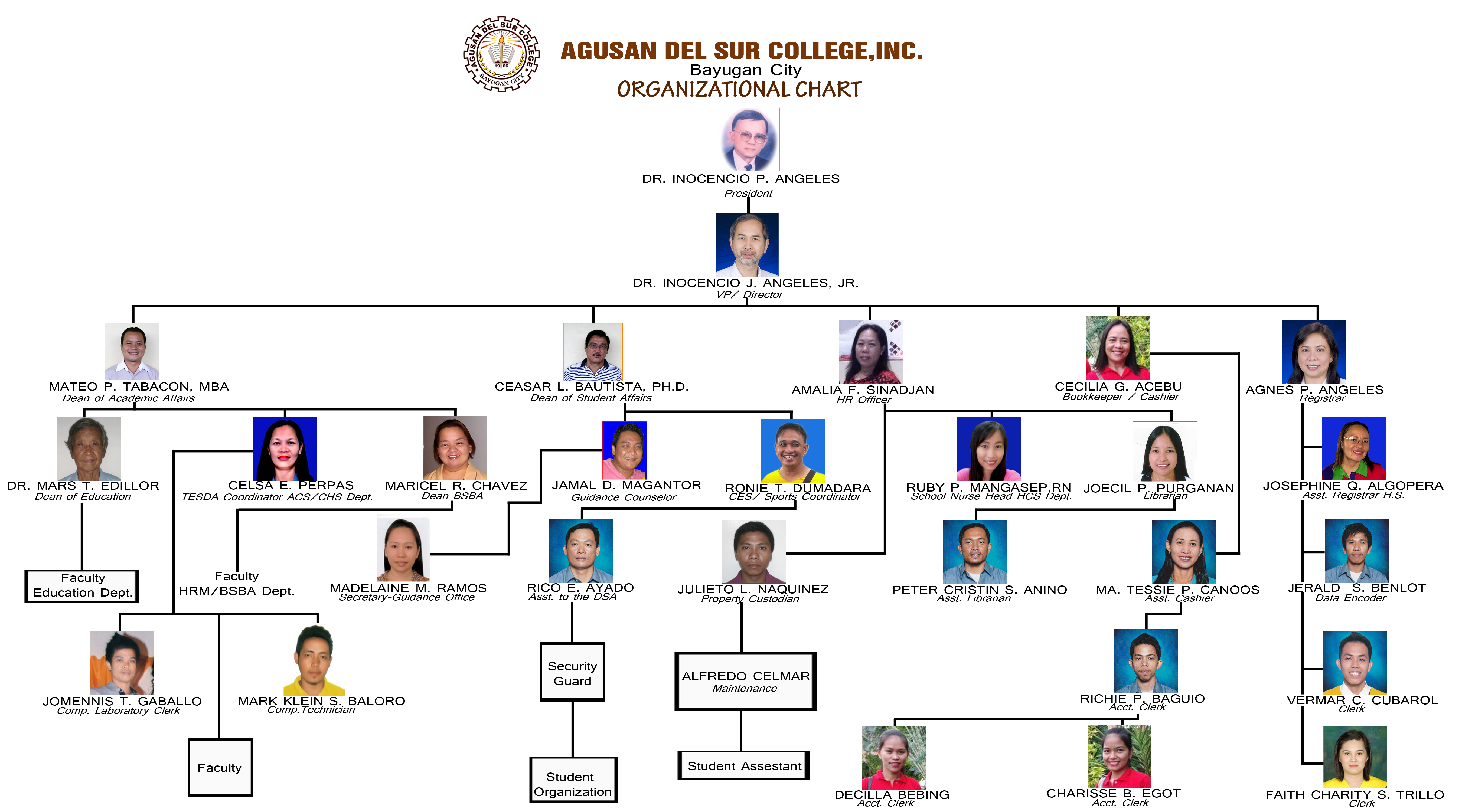private school organization chart bing images